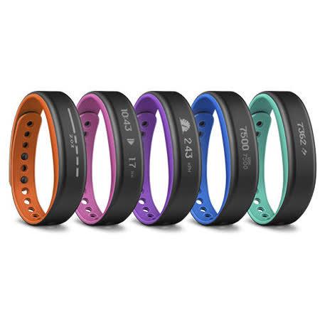 GARMIN vivo-smart 運動健身手環 穿戴裝置 水下50米 手機配對即時顯示