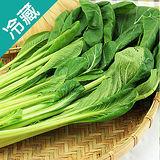 產銷履歷油菜2包(250G±5%/包)