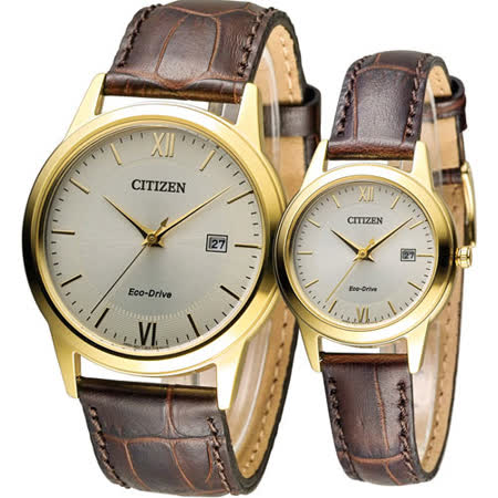 星辰 CITIZEN 光動能愛之永恆時尚對錶 AW1232-12A FE1082-13A