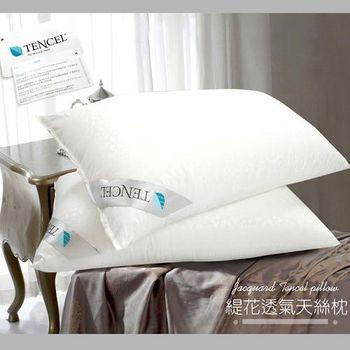 精靈工廠 ★買一送一★TENCEL天絲緹花透氣天絲枕 (B0591*2)