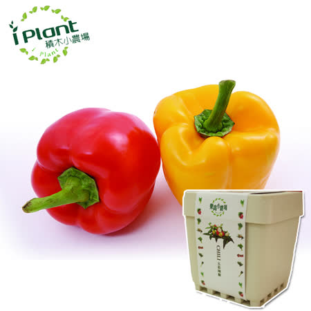 iPlant 積木小農場 -彩色甜椒︱ 開心農場自家有