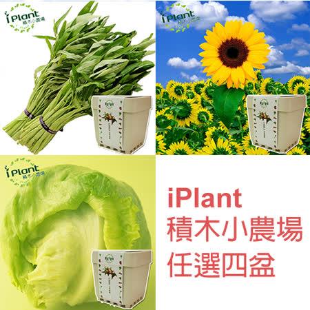 iPlant 積木小農場  買3盆送1盆