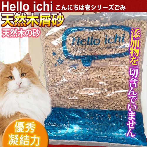 國際貓家Hello Ichi ~天然松木屑貓砂10L^(5KG^)^~3包