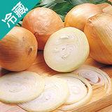產銷履歷黃金洋蔥1袋(600g±5%/袋)