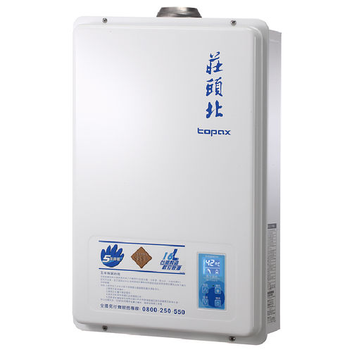 莊頭北 TH-7166FE 屋內大廈型數位恆溫強制排氣熱水器 16L