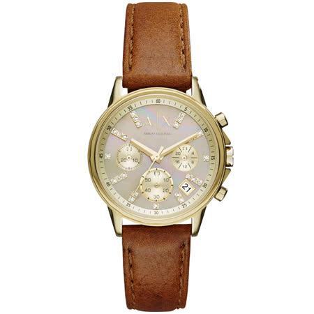 A│X Armani Exchange 獨領時尚晶鑽淑女腕錶-金X咖啡