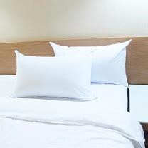 SHINEE 六星級強力推薦 (飯店強化版緹花抗菌表布羽絲絨枕-1入)-枕頭 每顆重量3KG