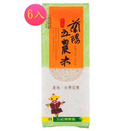 【蘭陽五農】-五農米(磚型)-6入