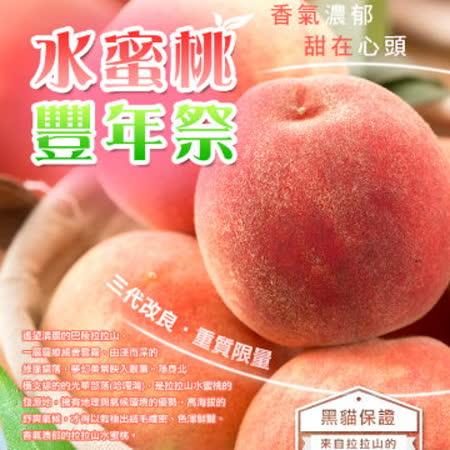 【黑貓探險隊X光華部落】拉拉山水蜜桃2.5斤(12粒)