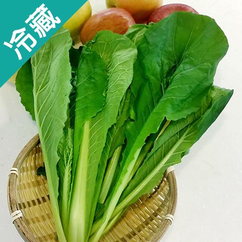 有機轉型期青松菜(250g±5%/包)