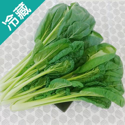 有機轉型期雪菜(250g±5%/包)