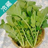 有機轉型期葉蘿蔔 (250g±5%/包)