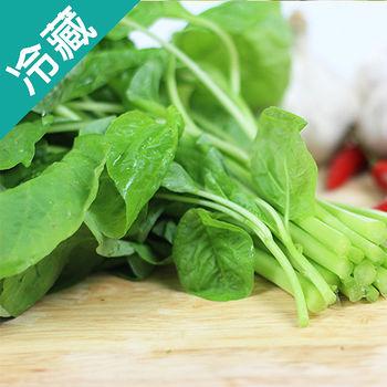 有機轉型期白莧菜(250g±5%/包)
