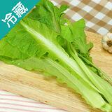 有機轉型期小芥菜(250g±5%/包)