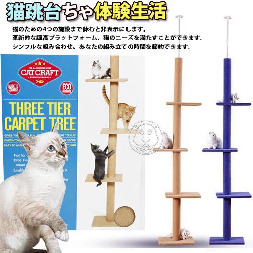 dyy~超長大型貓爬樹3way頂天豪華貓跳台