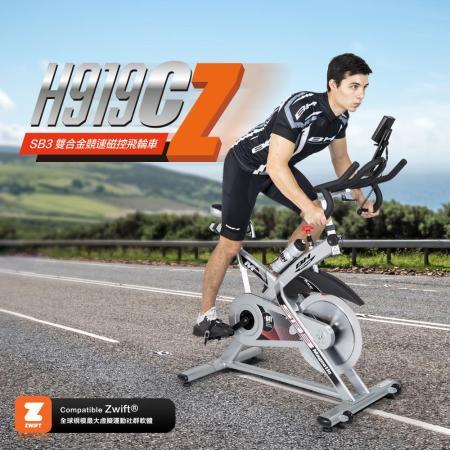 【BH】 H919C SB3 磁控飛輪健身車-限時特殺