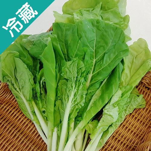 有機皺葉白菜250G/包