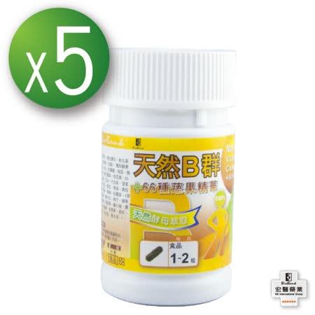 【宏醫】天然B群66種蔬果體驗組(5瓶)