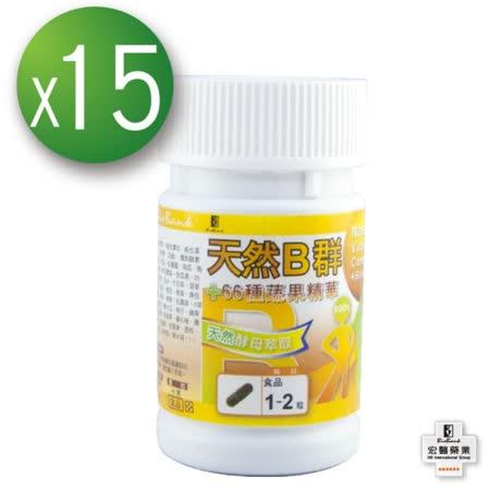 【宏醫】天然B群66種蔬果活力補養組(15瓶)