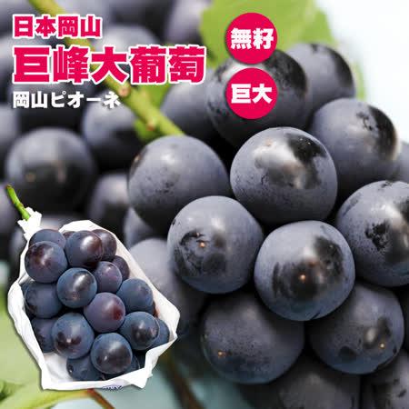 【台北濱江】日本岡山巨峰無籽貓眼葡萄3串入(650g±5%/串)