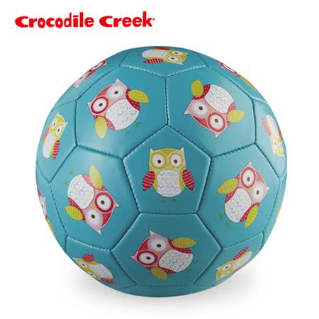 【美國Crocodile Creek】3號兒童運動遊戲足球-親親貓頭鷹