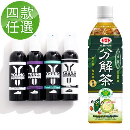 【愛之味】健康油切分解茶4箱組(500ml*24入/箱)
