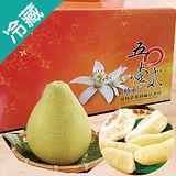 麻豆5012文旦禮盒5斤/盒