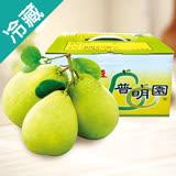 麻豆普明園文旦禮盒5斤/盒