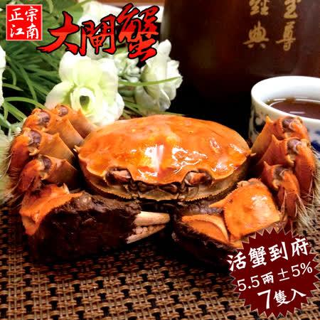 【秋蟹祭典】鮮活江南大閘蟹爆膏2A級7隻(5.5兩±5%/隻)