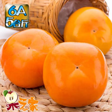 果之家 產地特選高山摩天嶺甜柿禮盒5台斤(6A,單顆5-6兩)