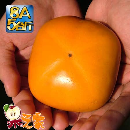 果之家 產地特選高山摩天嶺甜柿禮盒5台斤(8A,單顆7-8兩)