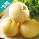 台灣新世紀梨4-5入/盒(1.1Kg±10%/盒)
