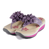 (女) 地之柏 機能塑身拖鞋 紫 鞋全家福