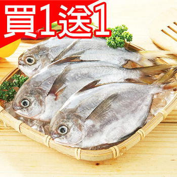 ★買一送一★肥嫩船凍大肉鯧1尾(100~150g/尾)