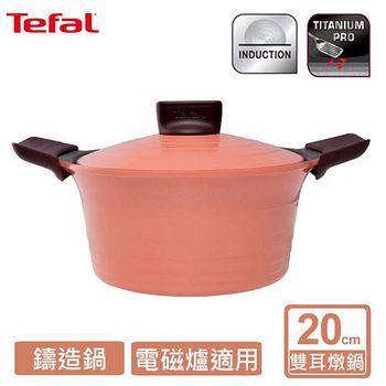 Tefal法國特福 御釜鑄造系列20CM 雙耳燉鍋 (附鑄造鍋蓋及矽膠隔熱手套) C7114414