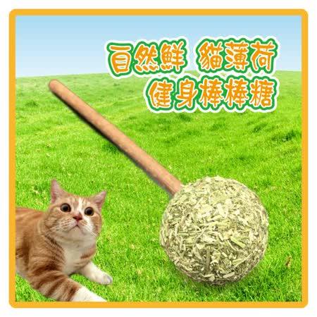 自然鮮 貓薄荷健身棒棒糖(45-NF-021)*3組入(I102A21-1)