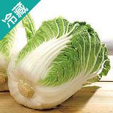 韓國山東大白菜1粒(1.2Kg±10%/粒)
