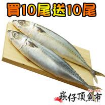 【買五送五】崁仔頂魚市活凍整尾鯖魚5件組(2尾/包 共10包)
