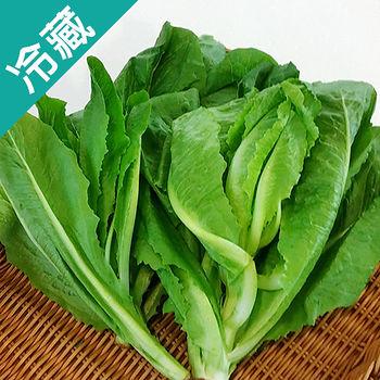 有機蘿蔓萵苣(250g±5%/包)