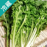 有機轉型期菊苣(250g±5%/包)
