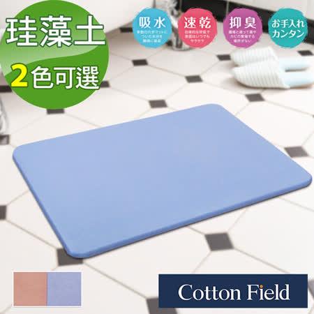 棉花田【原野】日本超人氣珪藻土吸水抗菌浴墊-2色可選(35x45cm)