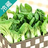 有機轉型期奶油白菜(250g±5%/包)