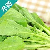 轉型期芥藍菜(250g±5%/包)