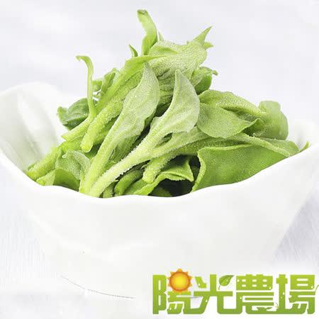陽光農場 網室無藥安全栽種水晶冰菜120公克/盒(5盒入)
