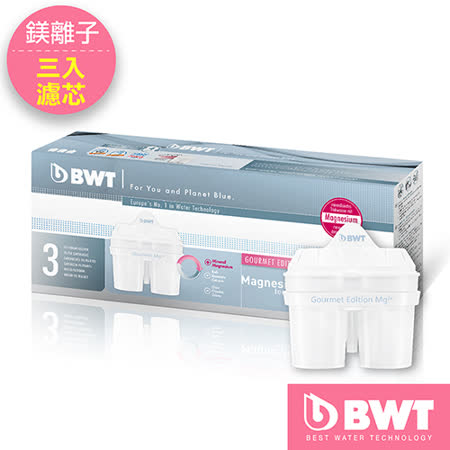 【BWT德國倍世】Mg2+鎂離子8周長效濾芯(三入組)