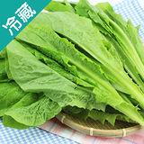 有機轉型期A菜(250g±5%/包)