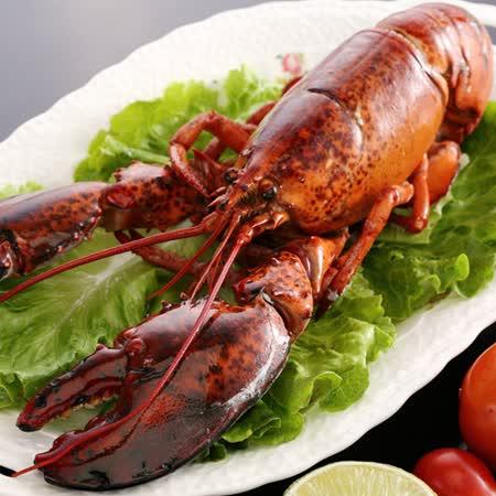 【上野物產】波士頓龍蝦(570g±10/隻),共1隻