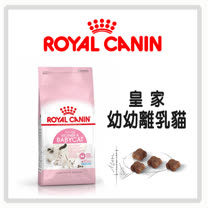 皇家 幼幼貓/離乳貓 BC34 - 2kg*2包組 (A012A02)