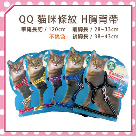 QQ 貓咪條紋H胸背帶(不挑色)WD30018 (K002B02)