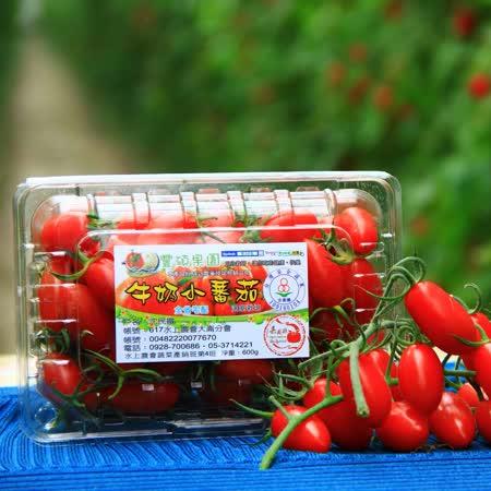 【豐碩果園】6入●禮盒裝●溫室牛奶玉女番茄(6入/盒,一入620g)(免運)